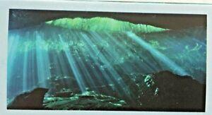 "Top Fin Underwater Cave Static Aquarium/Fish Tank Cling, Large - 24"" x 48"""