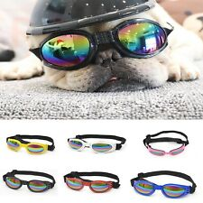 Pet's Handsome Plastic Biker Dog Hat Helmets Ridding Cap Doggie Puppy glasses