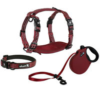 alcott Adventure Retractable Dog Leash or Harness or Collar - Red S - M - L