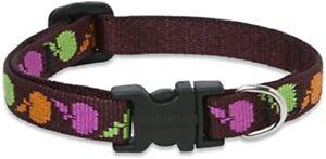 "New Dog Collar Lupine Pet CANDY APPLE XSmall 1/2"" x 6-9"" Adjustable Maroon"