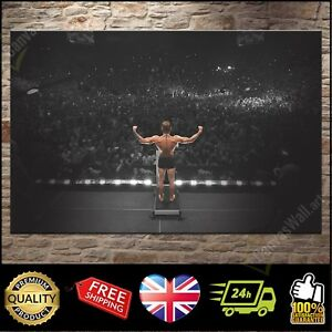 CONOR McGREGOR WEIGH IN UFC 189 MMA: BOX Canvas Print Wall Art Poster Photo