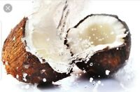 Coconut Type Soap / Candle Making Fragrance Oil 2-16 Ounce
