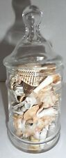 Seashells in Glass Apothecary Jar Storage Canister Deco 9 oz. of Sea shells  #36