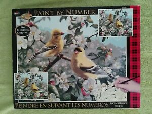 PLAID Creates  PAINT BY NUMBER KIT Birds Yellow  And White  20 x 16