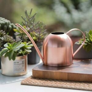 Stainless Steel Watering Can Rose Gold Long Spout Indoor Garden Pot Plant Tool