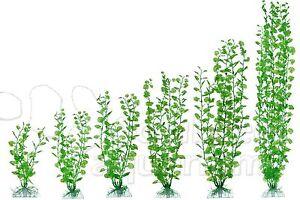 """Cardamine Plastic Anchor Base Aquarium Plant Decor AquaFlora Sizes 6"""" to 24"""""""