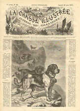 Saint Bernard, Mountain Dogs, With Brandy Keg, Vintage 1873 French Antique Print