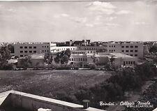 # BRINDISI: COLLEGIO NAVALE  - 1952
