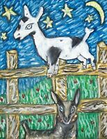 NIGERIAN DWARF Mischief and Mayhem Goat Collectible 8x10 Art Print Signed KSAMS