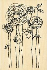 Flower Fields P116 Ranunculus STAMPENDOUS RUBBER STAMPS w/m Free Shipping  NEW