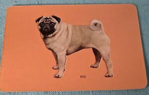 Coles Vintage. Pug Dog. Swap card. 50s  Blank Back. Exc cond.