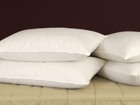 "The Ultimate Duck Feather Pillows Super king 19x36"" (Pair) With Free Cream Cases"