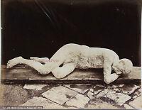Italia Morto Trovato IN Pompei Nel 1873 Vintage Albumina, Ca 1875
