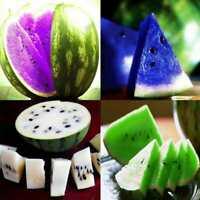 Süß Seltene Wassermelone Samen Fruchtsamen Orange Weiß / Grün / Blau / Lila L1H5