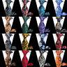 Men's Necktie Handkerchief High Grade Floral Paisley Tie Pocket Square Set
