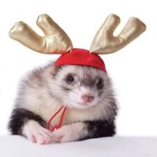 MARSHALL PET FERRET CHRISTMAS THEME HOLIDAY ANTLERS. TO USA