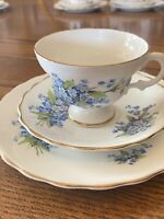 Crown Bone China Tea Cup Saucer and Dessert Plate with Forget me not flowers