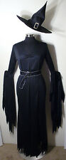 Sexy Gothic Elegant Witch Gown Dress and Hat Halloween Costume Size M/L 10-14