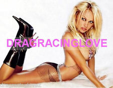 "GORGEOUS Actress/""Bay Watch Babe"" Pam Anderson 8x10 SEXY PHOTO! #(14)"