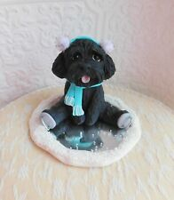 Labradoodle Schnoodle Goldendoodle Ice Skating Clay by Raquel at theWrc