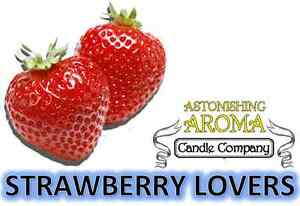 STRAWBERRY LOVERS COLLECTION Soy Wax Clamshell Break Away tart melt candle