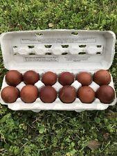 New Listingblack copper marans hatching eggs 12 Eggs! Buy Now! One Dozen Eggs!
