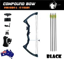 15-20lbs Compound Bow Arrow Archery YOUTH KIDS JUNIOR Shooting BLACK RIGHT HAND