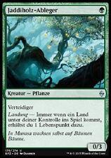 3 Jaddi Offshoot / Jaddiholz-Ableger (mint, Kampf um Zendikar, deutsch)