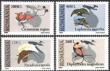 Romania 2000 Birds of Paradise/Nature/Wildlife/Conservation 4v set (n17678)