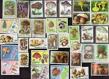 100 MUSHROOMS ON Stamps  All Different (c80)