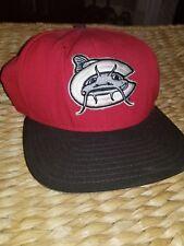 Carolina Mudcats Minor League Baseball Vintage New Era 90s Snapback hat