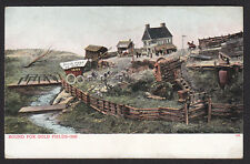 Colorado-Pikes Peak or Bust-Bound for Gold Fields-Antique Postcard