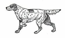 Chien-Canin-English Setter non montés clear stamp environ 72x40mm