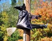 METAL MAGNET Halloween Witch On Broom Ran Into Pole Humor MAGNET