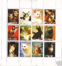 GATTI  - CATS UDMURTIA 2005 2