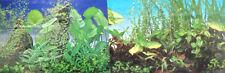 poster fond d aquarium decor plantes double face 150cm x50cm