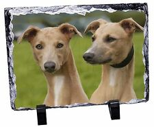 Whippet Dogs Photo Slate Christmas Gift Ornament, AD-WH1SL