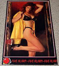 FIVE ALARM Brunette Bra Panties Heels Sexy Babe Poster 1987 Hot Girl Garage