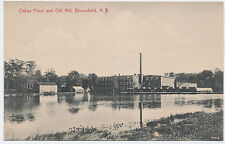 Rare 1910 Bloomfield New Jersey Nj Old Mill Oakes Pond Handcolored Post Card Pc