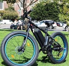 Super Fat Tire 500W Wild Mountain Bike