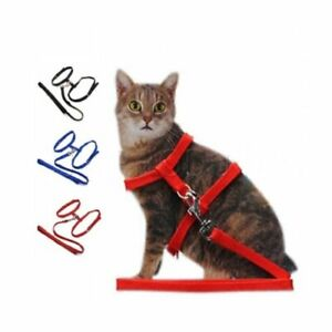 PET LIVING 1 x Brand New Cat Harness (Lead/Leash/Collar) (PET2946)