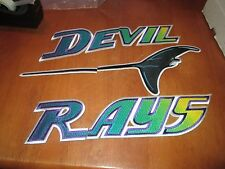 AWESOME TAMPA BAY DEVIL RAYS JERSEY IRON ON PATCH