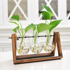 Desktop Plant Terrarium Hydroponic Glass Planter Bulb Vase W/ Wooden-Stand 1Set