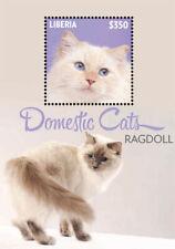 Liberia - 2014 - WHITE CAT - Souvenir Sheet - Stamp - MNH DOMESTIC CATS