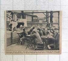 1923 St Pancras Open Air School Euston Goat As Model