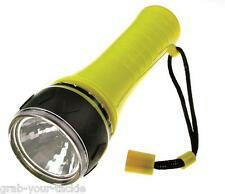 LED Torch Flashlight Waterproof 30M Tested 1 Watt Bright Dive Boating Camping