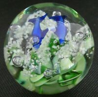 Dolphins swimming over green sea grasses in small paperweight
