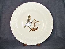 """Rare Discontinued A.Meakin Birds of America #62 """"Passenger Pigeon"""" 11"""" Plate EUC"""