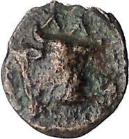 Larissa Phriconis in Aeolis 400BC Original Ancient Greek Coin Female Bull i49651