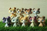 LPS Collie 2452 1542 2210 893 58 1262 363 1676 67 272 lot Pet Shop Toy kids Gift